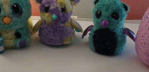 Hatchimals for Sale in Cleveland,  OH