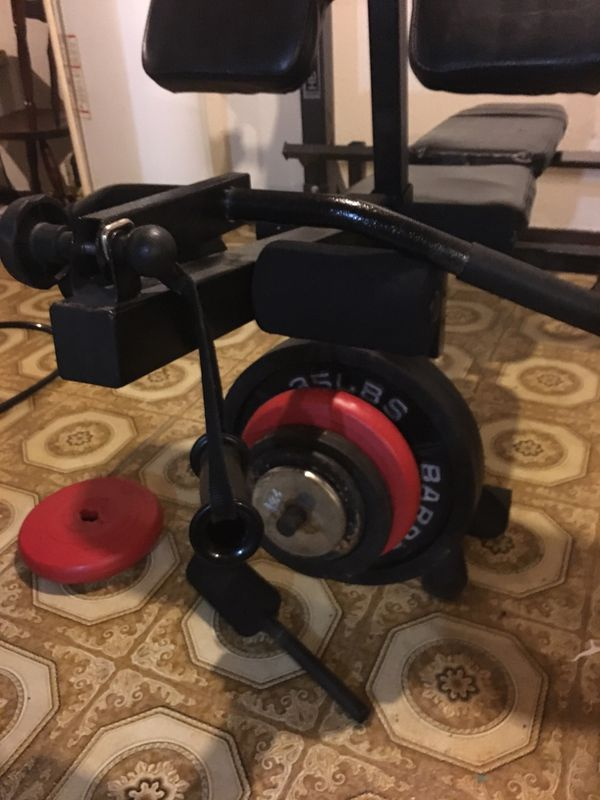 Phoenix weight bench with Olympic bar and everlast punching bag