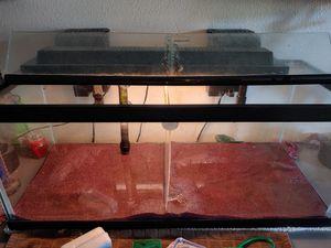20 gallon long aquarium for Sale in Hillsboro, OR