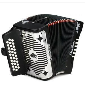Acordeon hohner panther 31 for Sale in Baytown, TX