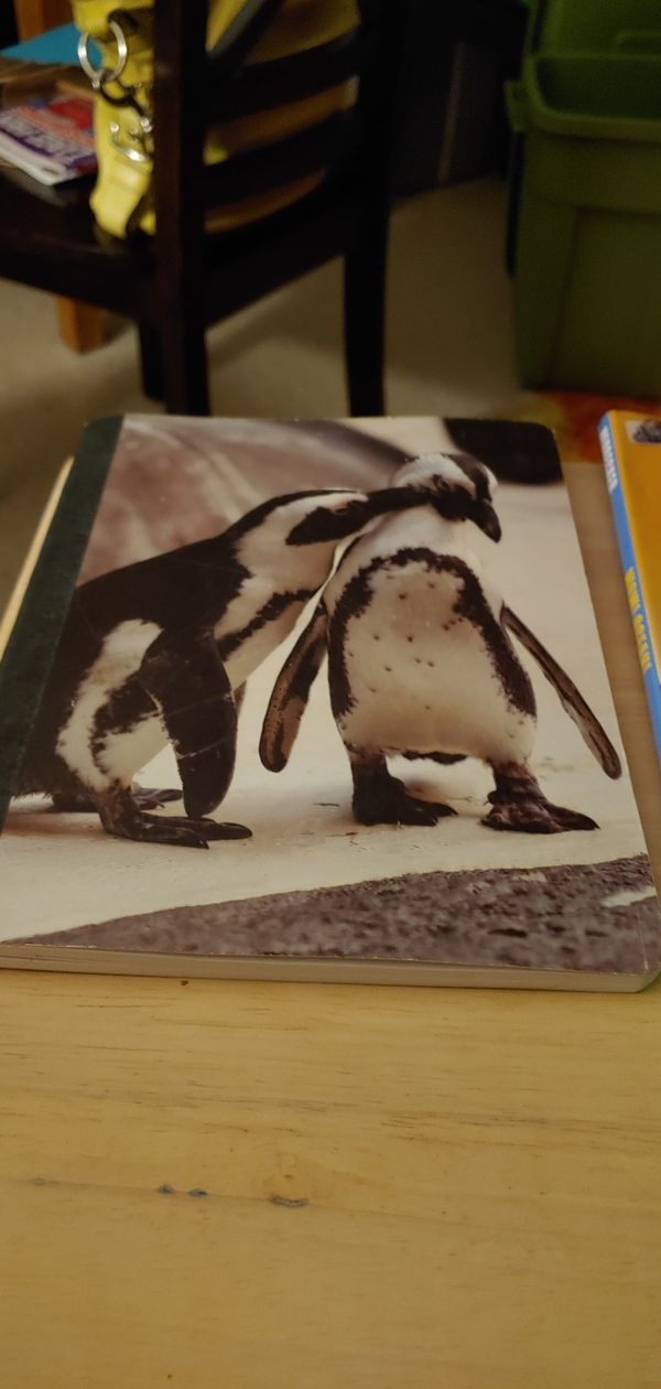 Animal Lined Notebooks w/ education
