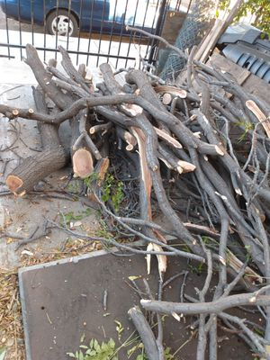 Free firewood for Sale in Ontario, CA
