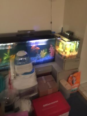 2 fish tanks with low stand for Sale in San Antonio, TX