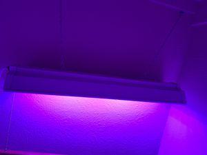 Led grow lights for Sale in Carrollton, TX