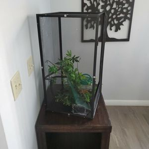 Camillian Living Area Terrarium for Sale in Moreno Valley, CA