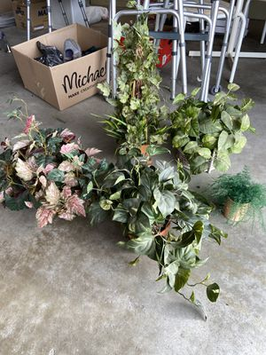 Variety of Fake Plants for Sale in Redondo Beach, CA