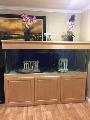 Fish tank 180 gallons come with filter, rooks, light and decorations , Fish tank wide size 7 , deep 2 fit , T 2 fit for Sale in Bellevue, WA