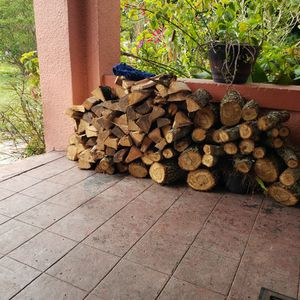 Firewood for Sale in Tampa, FL