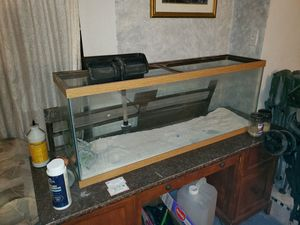 Fish tanks and stand. for Sale in Grand Prairie, TX