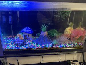 Fish aquarium for Sale in Los Angeles, CA