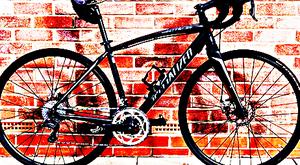 FREE bike sport for Sale in Watkins Glen, NY