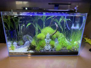 Waterbox aquarium clear 16 for Sale in Moreno Valley, CA