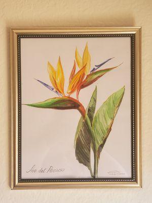 Set Botanical illustration for Sale in Newport Beach, CA
