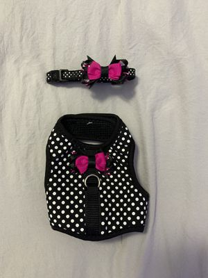 Dog harness and matching collar for Sale in Lake Worth, FL