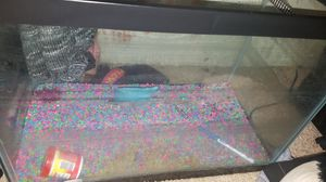 Fish Tank for Sale in Choctaw, OK