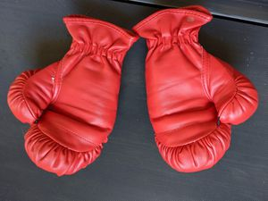 Boxing gloves for Sale in MONTGOMRY VLG, MD