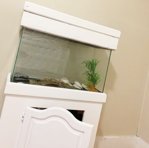Aquarium with great cupboard underneath to store various things. for Sale in Framingham, MA