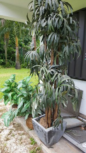 Silk fake indoor plants for Sale in South Miami, FL