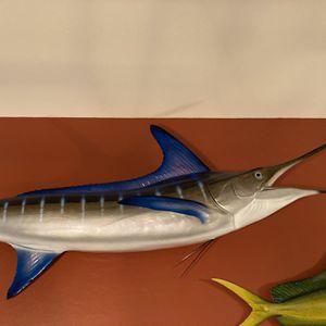 Marlin & Mahi Mahi (Dorado) for Sale in Phoenix, AZ