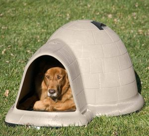 XL dog igloo for Sale in Turbotville, PA
