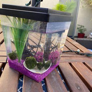 Small Aquarium for Sale in Brea, CA