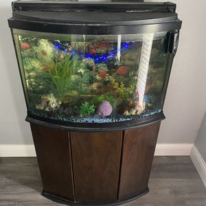 Fish Tank And Stand for Sale in Elk Grove, CA