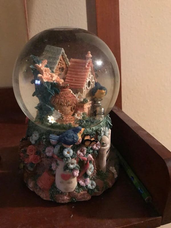 Nice Musical Glass Snow Globe w/Flower Covered Base and Bird Houses Reduced $7