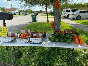aguacates mangos limones mandarinas!!! for Sale in Palmetto Bay, FL