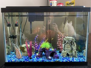 Fish tank 20 gallon high for Sale in Augusta, GA