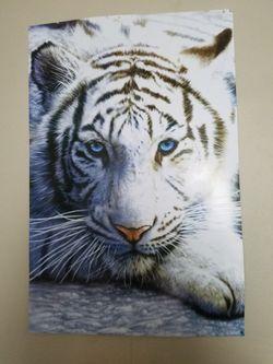 White Tiger Poster for Sale in Malaga,  WA