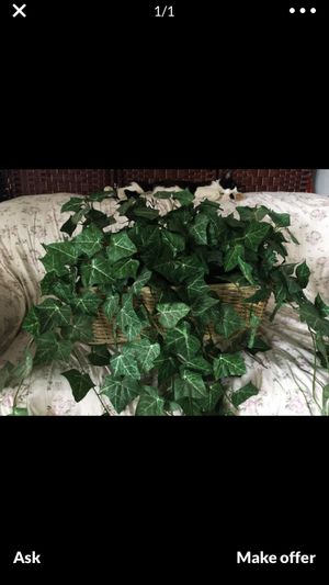 2 fake decor plants for Sale in Imperial Beach, CA