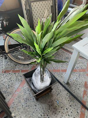 Fake Plant for Sale in Santa Ana, CA