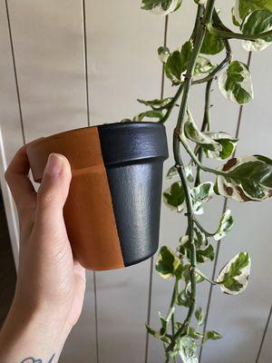 Plant pot for Sale in Visalia, CA