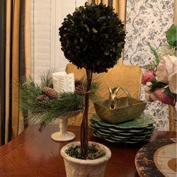 Boxwood Topiary for Sale in Ballwin,  MO