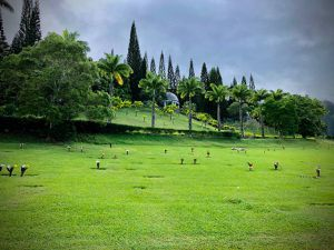 Burial Plots - Valley of the Temples for Sale in Kaneohe, HI