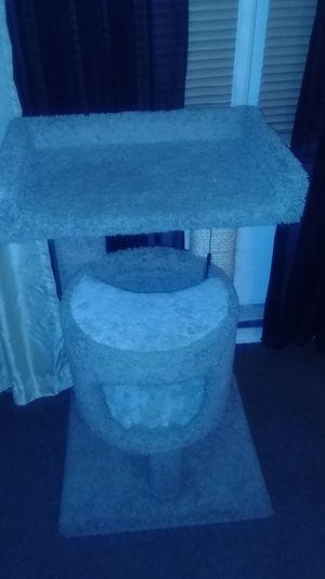 Cat house for Sale in Norfolk, VA