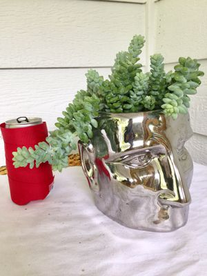 Real Indoor Houseplant - Donkey Tail Succulent Plants in Silver Man Head Ceramic Planter Pot for Sale in Auburn, WA