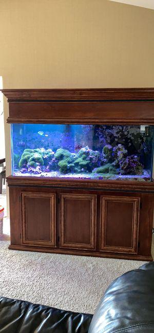 Saltwater aquarium for Sale in New Baltimore, MI