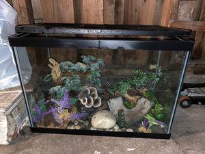 Aquarium / tank & decor for Sale in SeaTac, WA