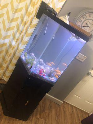 30 gallon fish tank for Sale in Baltimore, MD