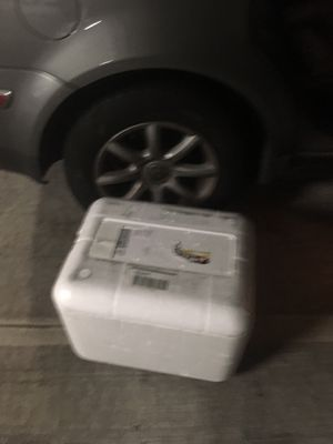 Styrofoam container/cooler - free! for Sale in Seattle, WA