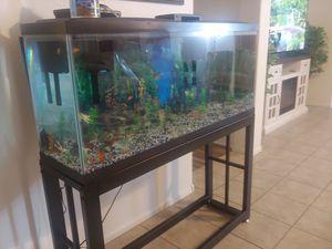 Aquarium Fish Tank Filter Coral - 55 Gal for Sale in Phoenix, AZ