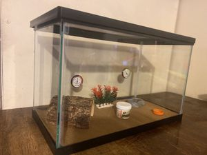 10 Gallon Tank with complete reptile set up for Sale in Baldwin Park, CA