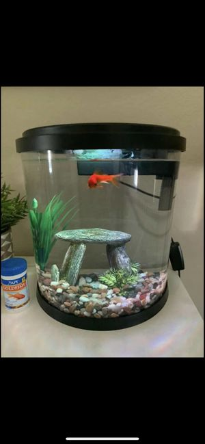 3.5 gallon fish tank (has filter inside with two new pads & a light) for Sale in Huntington Beach, CA