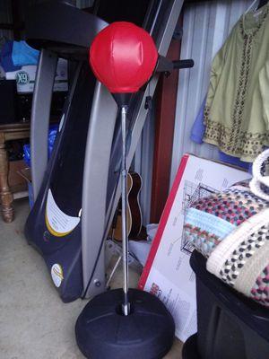 Punching bag for Sale in Lynchburg, VA