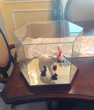 Beautiful Glass Dome Display Case for Sale in Bradenton, FL