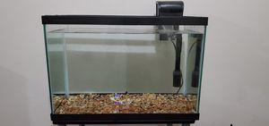 20 Gallon Tank, Filter, Gravel, Decorations, Net for Sale in Smyrna, TN