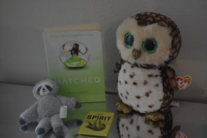TY Beanie Baby Owl with tag, Matched Book, Clip-on Sloth and Sloth Spirit Animal Magnet..All items for $15.00!!! for Sale in San Antonio, TX