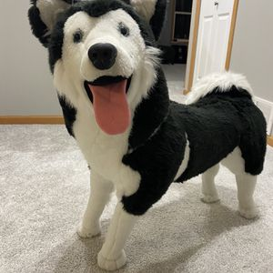 Life size Stuffed Siberian Husky Plush Toy, Excellent Condition for Sale in Brooklyn Park, MN