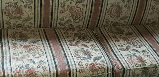 Sleeper Sofa for Sale in Livonia,  MI